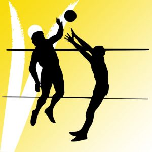 VOLLEYBALL   BEACH VOLLEY   FOOT VOLLEYBALL SYSTEMS