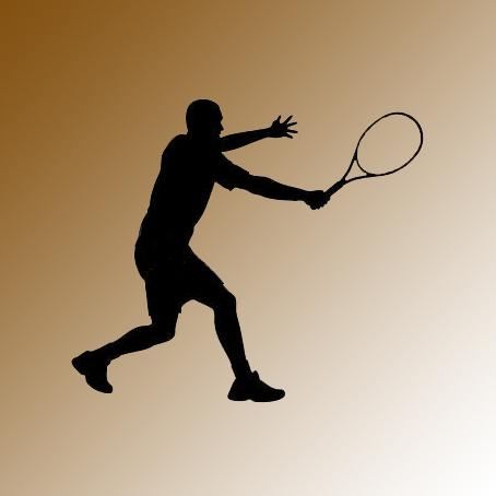 TENNIS   BEACH TENNIS   BADMINTON